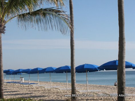 Beach Umbrellas In The Sandy Beach Of Fort Lauderdale